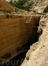 Фотография Национальный парк Эйн Авдат
