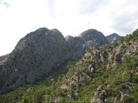 джип-сафари,природа
