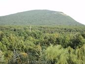 """вот я и в Пятигорске. вид из номера на гору Машук. И санаторий называется """"Машук"""""""