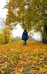Даугавпилсская крепость. Осень