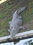 Крокодил...