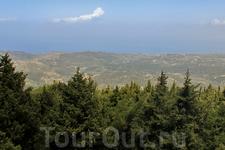 лес и вдалеке море... вид с балкона Дачи Муссолини