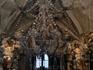 Люстра барочного вида сделана не из дерева, а из элементов скелетов и подвешена на гирляндах из челюстей.