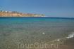 Красное море. А это уже открытое море. Всего в 5 минутах ходьбы от бухты. Здесь уже можно вдоволь поплавать с маской и полюбоваться красотой кораллов и ...