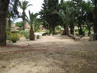 На территории древнего Карфагена