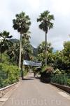 Ботанический сад Мон-Флери был основан в 1901 году.