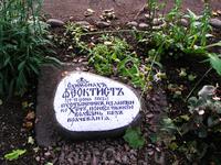 старое братское кладбище
