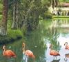 Фотография отеля Villa Islazul San Josе del Lago