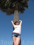 пальма с женой