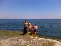 Очередь в Черное море...