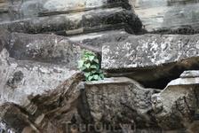 Ангкор Ват. Возрождение новой жизни.