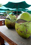 Коктейль из зеленого кокоса