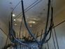 Корабль-стекловоз был обнаружен в бухте Серче в 24 милях к западу от Мармариса. Стеклянный груз, который перевозило судно, датируется первой половиной ...