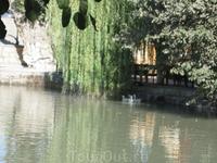 Ляби-хауз – четырехсотлетний искусственный водоем в центре Бухары, самый большой в свое время. Ляб – губа, хауз – водоем, дословно «губа водоема». Если ...