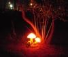 Фотография Парк фонарей в Бэйдайхэ
