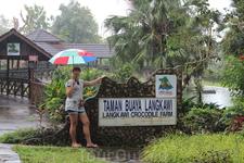 Крокодиловая ферма. Не повезло с погодой, начался проливной дождь. Но не беда, всем выдали по зонту