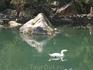 Воронцовский парк. В центре Лебединого озера расположена каменная пирамида, из которой бьет фонтан.