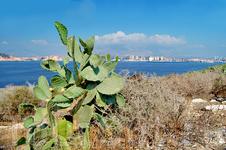 Вид на Бенидорм с острова в заливе.