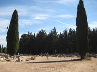 Кипарисы (Асклепион)