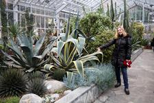 Многие из растений имеют солидный возраст.