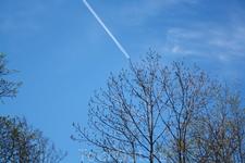 Пушкин. Небо. Самолет