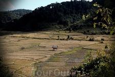 Влюбился в природу страны Лао, в нетронутость гор, в целомудренность маленьких деревень, едва тронутых техно-цивилизацией, в солнечное лето (20-28 градусов) ...