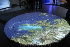 На втором этаже Lofoten Aquarium находится интерактивная зона, рассказывающая об обитателях подводного мира, особенностях жизни на Лофотенах и кинотеатр, где можно посмотреть фильм о природе, жизни и