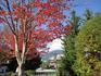 Whistler,BC