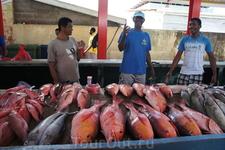 Рыбаки на рынке. Такого выбора рыбы и морепродуктов трудно где-то встретить. Там даже была разделанная тушка акулы и рыбы меча.