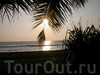 Тур по Шри Ланке – подводные камни. Негативный опыт.