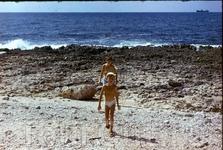 наш вулканический пляж
