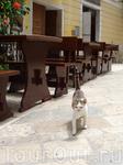 в коллекцию котов и кошек из разных городов мира