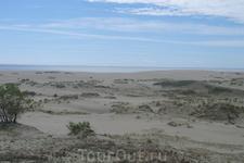Именно Эфа разработал технику укрепления дюн и их закрепления посадками леса. На этой дюне им впервые была применена техника посадки саженцев с глыбой ...