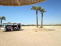 Шарм эль Шейх. Отель Faraana Heights Resort 4*. От отеля до пляжа можно доехать также на этом автобусе.