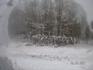 Зимняя дорога (снимок из машины)