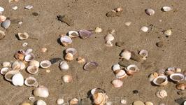 на пляже в Каламаках