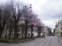 Центральная улица Юрмалы Jomas iela