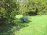 В парке Лазенки