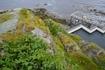 С верхней площадки вид на тюлений вольер окрыватся, жаль, что они куда-то все попрятались!