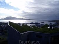 и современный дизайн крыш тоже в траве