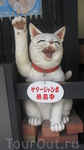 Коты Киото