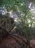 Тропа, по которой можно добраться в пещеру, расположенную слева Пра Нанг