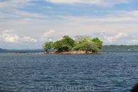 Черепаший остров. Вершина рифа.