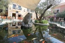 Фискардо, пруд с рыбками