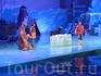 шоу моржей и морских львов