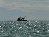 ловля рыбки