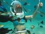 Где-то в глубинах Индийского  океана