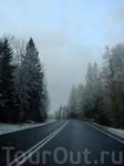 Утренняя дорога