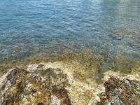 А вот так выглядит здесь берег моря: живописные камни и бирюзовая вода