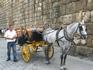 Местное такси. Их очень много в городе